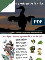 1 Evolucion_ Fiismo y Evolucionismo