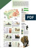 ANDALUCIA.pdf