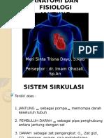 Meri Sistem Kardiovascular