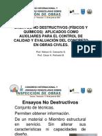 2.2-Expo Peñuela Camacho (1)