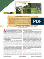 A Química dos Agrotóxicos.pdf