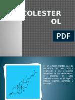 colesterol.pptx