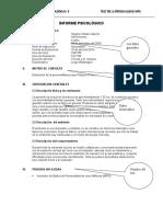 Informe MILLON.doc