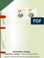 enzymes unit 1.pptx
