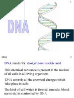 DNA(2)