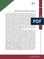 FES argentina.pdf