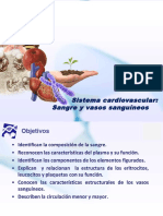 Cardiovascular Final