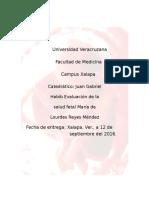 Evaluación de la salud fetalcopia