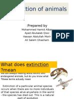 Extinction of Animals