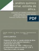 Proyecto Estrella de África