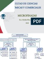 Curso Completo de Microfinanzas (1)