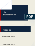 jaimebiodiversidad-121213115132-phpapp01
