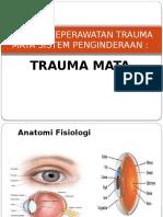 Asuhan Keperawatan Trauma Mata Sistem Penginderaan