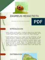 ZAGREUS_HEXACTICTA_ppt