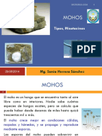 03-MOHOS