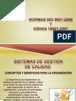SIstema integral.pdf