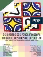 Os direitos dos povos indígenas no Brasil - desafios no século XX.pdf