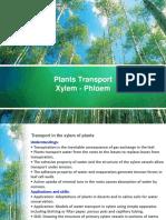 Transport Xylem and Phloem 2015.pdf