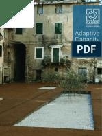 Adaptive Capacities