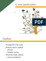 Phylogenetic Tree ConstructionMai Copy