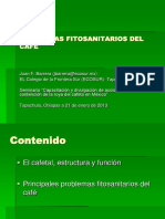 I. Problemas Fitosanitarios del café.pdf