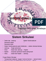 Sistem Sirkulasi Gambar