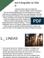 Consejos Para Fotografiar La Vida en El Bosque