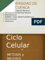 9 Ciclo Celular