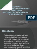 Receptory Serotoninowe i Dopaminowe a Zaburzenia Motywacyjne i Poznawcze w Schizofrenii