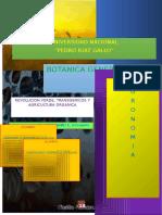 REVOLUCION VERDE, TRANSGENICOS Y AGRICULTURA ORGANICA