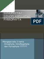 DINOPHYTA