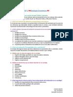PEP 2 Geología Económica USACH