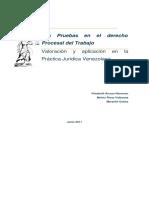59321768-Derecho-Procesal-Laboral-Pruebas.pdf