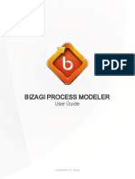 Bizagi's Guide