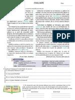 evaluare clasa aIV-a UI1 Lb romana (intuitext)
