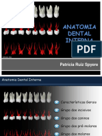 Anatomia Dental Interna - Endo