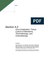 Virus Eradication tissue culture of Meristems, Thermotherapy