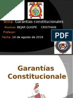 GARANTIAS CONSTITUCIONALES23