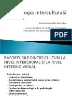 2 Gavreliuc Raportul Dintre Culturi5