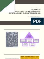 Sem3_subsistemas y Profesional Sig