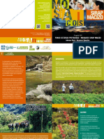 Informe Final Mosaicos - Resumen Ejecutivo