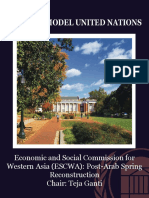 economic-and-social-commission-for-western-asia-escwa-post-arab-spring-reconstruction-d