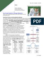 Amino Acid Synthesis.pdf
