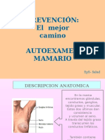 Diapositivas Cancer de Mama Copia