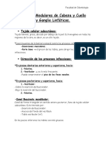 espacios_celulares_y_ganglios_linfaticos.pdf