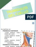 36388689-TRIANGULOS-DEL-CUELLO.pptx