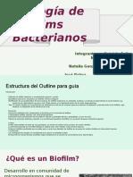 Ecología de Biofilms Bacterianos