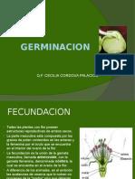 10_GERMINACION