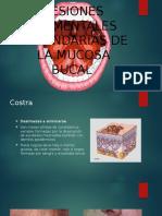 Medicina L.S