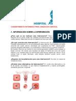 Consentimiento Informado Para Conizacion Cervical (1)